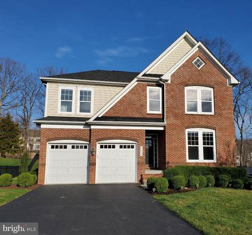 21228 Walkley Hill Place, ASHBURN, VA 20148 (#VALO407354) :: Colgan Real Estate