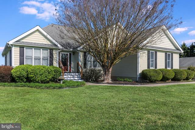 178 Clemencia Road, EARLEVILLE, MD 21919 (#MDCC168892) :: John Smith Real Estate Group