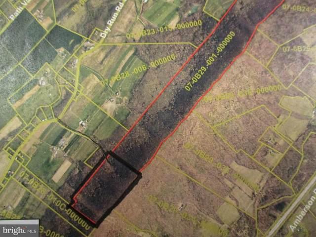 00 New Bridge Road, DRY RUN, PA 17220 (#PAFL172142) :: The Riffle Group of Keller Williams Select Realtors