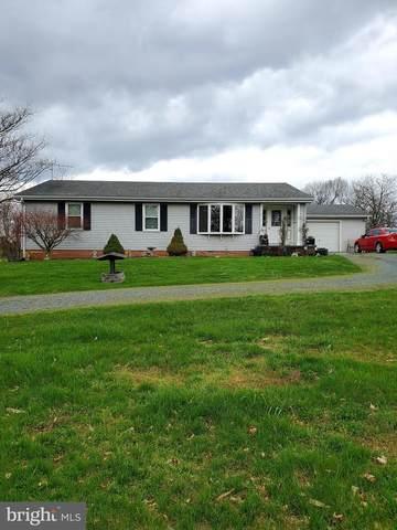 3967 Apple Pie Ridge Road, WINCHESTER, VA 22603 (#VAFV156632) :: Network Realty Group