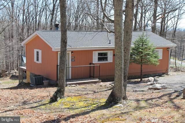 143 Hiawatha Trail, WINCHESTER, VA 22602 (#VAFV156642) :: Dart Homes