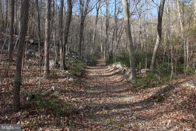 Naked Creek Road, ELKTON, VA 22827 (#VAPA105190) :: The Gold Standard Group