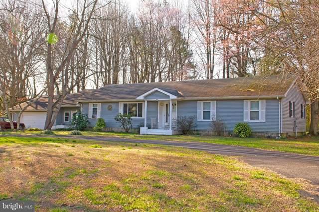 17878 Mahonia Drive, LINCOLN, DE 19960 (#DESU159108) :: Blackwell Real Estate