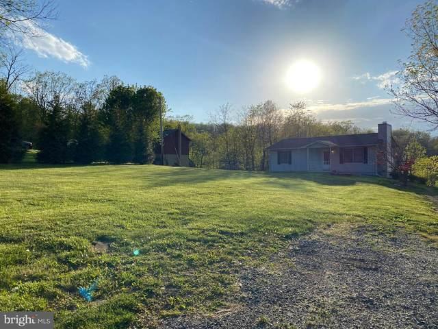 209 Blue Valley Road, LINDEN, VA 22642 (#VAWR139866) :: Colgan Real Estate