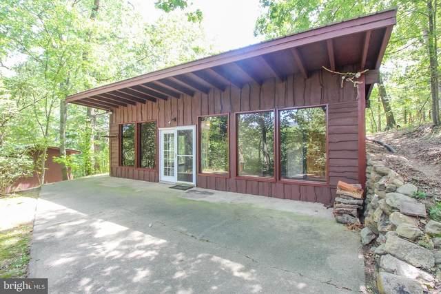 419 Grand View Drive, LURAY, VA 22835 (#VAPA105194) :: Pearson Smith Realty
