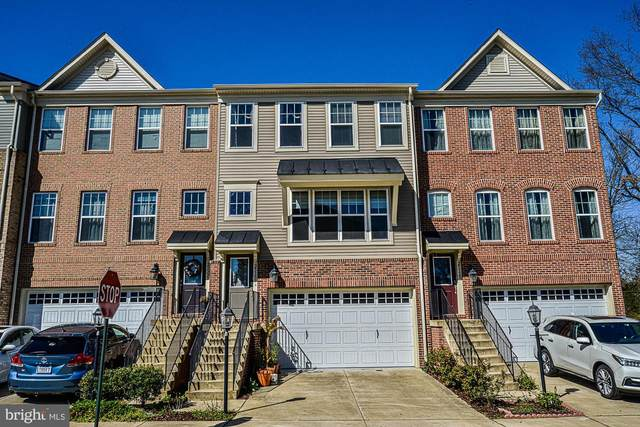25331 Wakestone Park Terrace, CHANTILLY, VA 20152 (#VALO407542) :: Pearson Smith Realty