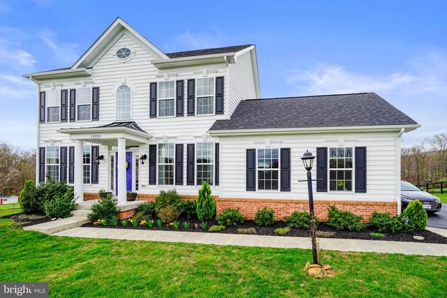 13933 Paris Breeze Place, HILLSBORO, VA 20132 (#VALO407562) :: The Greg Wells Team