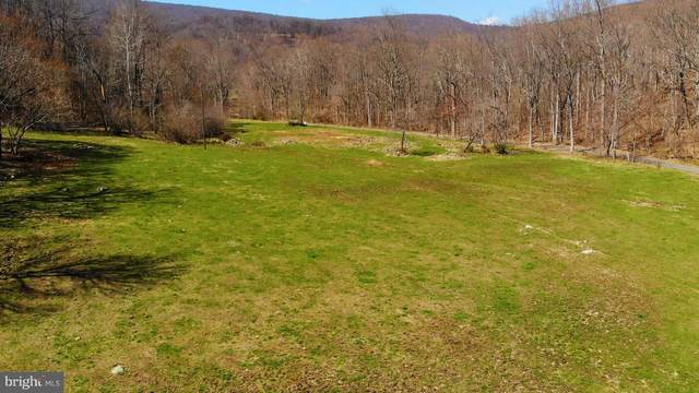 Pointer Ridge Lane, WASHINGTON, VA 22747 (#VARP107208) :: Pearson Smith Realty