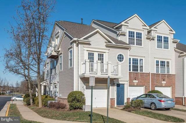 20387 Birchmere Terrace, ASHBURN, VA 20147 (#VALO407584) :: Colgan Real Estate