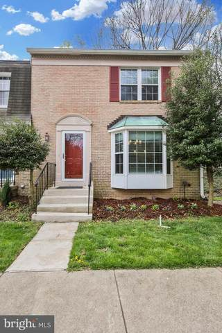 6600 Green Ash Court, SPRINGFIELD, VA 22152 (#VAFX1120934) :: Pearson Smith Realty