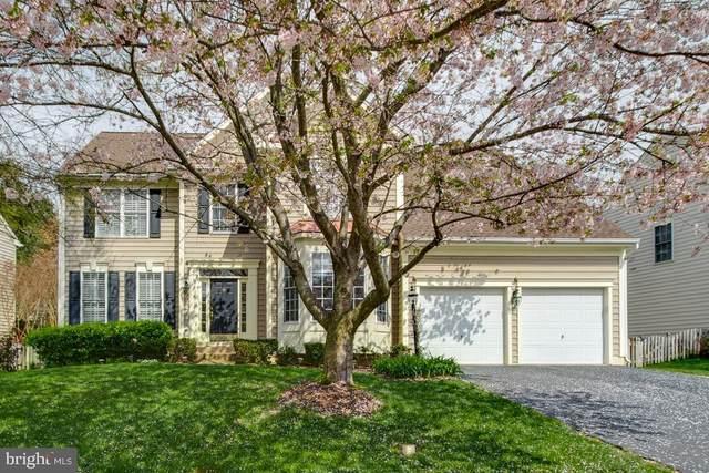 9302 Worthington Drive, BRISTOW, VA 20136 (#VAPW491770) :: Larson Fine Properties