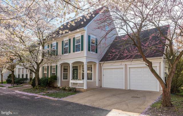 43705 Vineyard Terrace, ASHBURN, VA 20147 (#VALO407630) :: Colgan Real Estate