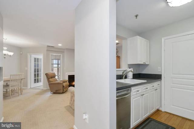 5565 Seminary Road #407, FALLS CHURCH, VA 22041 (#VAFX1121032) :: Bic DeCaro & Associates