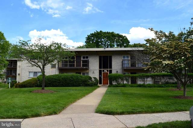 4959 Americana Drive #202, ANNANDALE, VA 22003 (#VAFX1121282) :: Homes to Heart Group