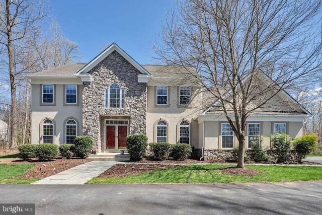 19722 Lovella Country Court, PURCELLVILLE, VA 20132 (#VALO407728) :: Pearson Smith Realty