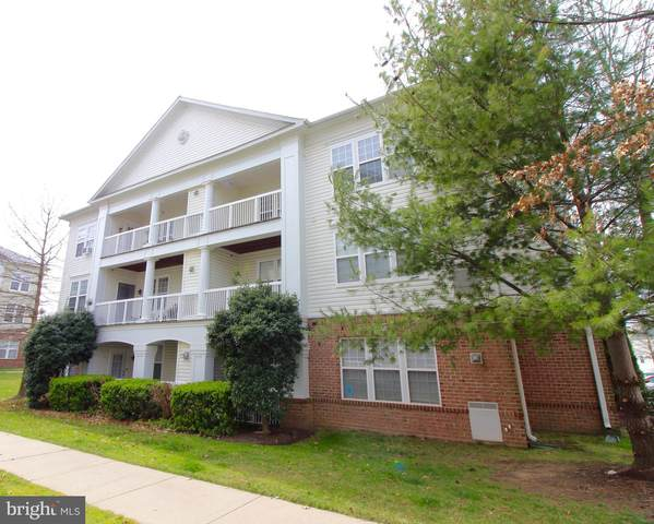 22641 Blue Elder Terrace #301, BRAMBLETON, VA 20148 (#VALO407734) :: LoCoMusings