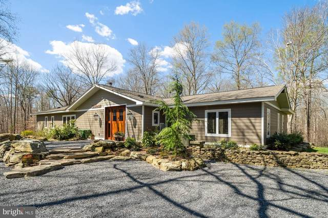 6480 Fireside Place, MARSHALL, VA 20115 (#VAFQ164994) :: Larson Fine Properties
