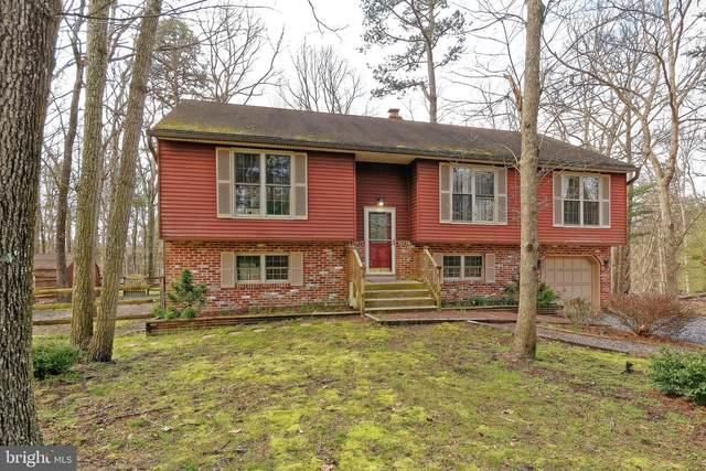 33 Holly Park Drive, TABERNACLE, NJ 08088 (#NJBL370402) :: Blackwell Real Estate
