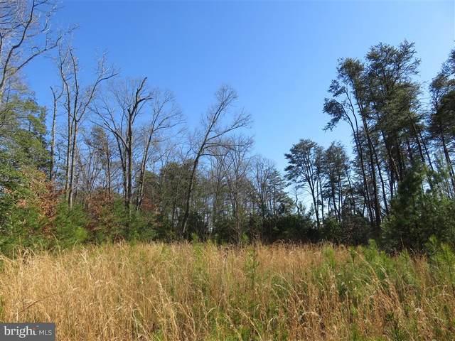 1115 White Oak Road, FREDERICKSBURG, VA 22405 (#VAST220616) :: Colgan Real Estate