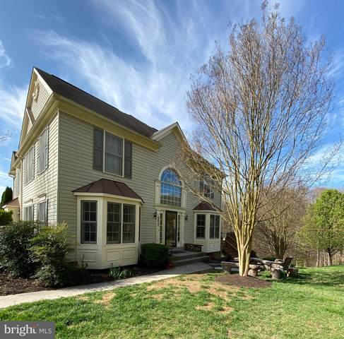 6650 Harbor Light Way, NEW MARKET, MD 21774 (#MDFR262366) :: Jim Bass Group of Real Estate Teams, LLC