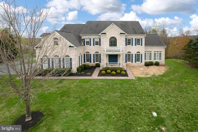 5529 Roan Chapel Drive, HAYMARKET, VA 20169 (#VAPW492012) :: A Magnolia Home Team