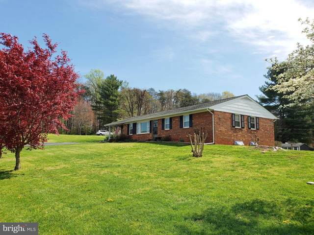 256 Blankenbaker Road, MADISON, VA 22727 (#VAMA108282) :: Bic DeCaro & Associates