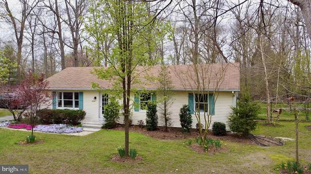 25767 Whoville Lane, MILTON, DE 19968 (#DESU159304) :: Barrows and Associates