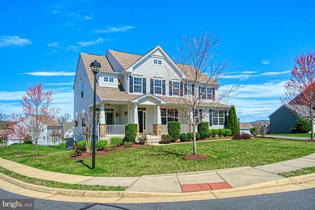 43114 Rocks Way, LEESBURG, VA 20176 (#VALO407846) :: Talbot Greenya Group