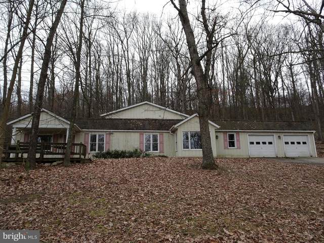 4028 Trego Mountain Road, KEEDYSVILLE, MD 21756 (#MDWA171650) :: A Magnolia Home Team