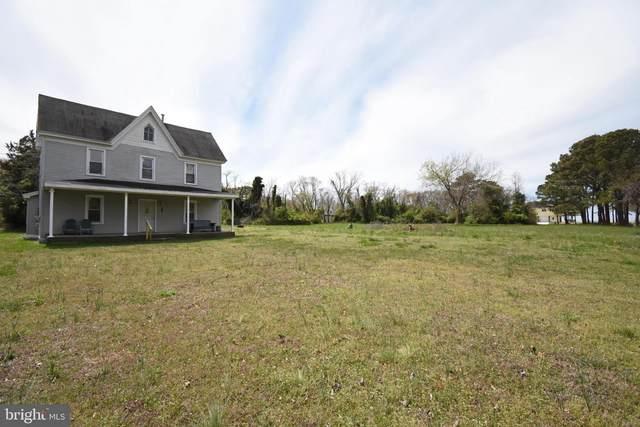 23151 Soundside Estates Road, DEAL ISLAND, MD 21821 (#MDSO103408) :: LoCoMusings