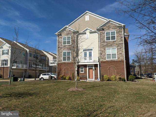 25503 Amber Gate Terrace, CHANTILLY, VA 20152 (#VALO407934) :: The MD Home Team