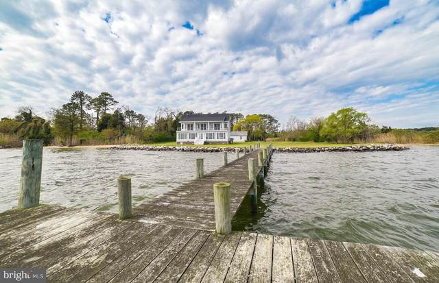 16168 Piney Point Road, PINEY POINT, MD 20674 (#MDSM168732) :: The Putnam Group