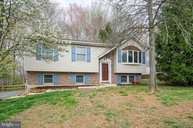 600 Gray Mount Circle, ELKTON, MD 21921 (#MDCC168988) :: A Magnolia Home Team
