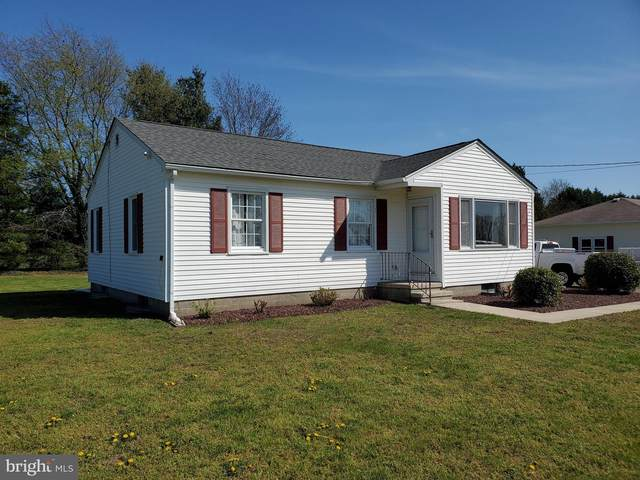29 Cataldi Lane, CAMDEN, DE 19934 (#DEKT237582) :: Speicher Group of Long & Foster Real Estate
