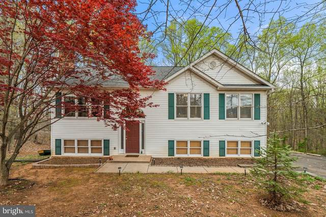 8092 Zellas Road, WARRENTON, VA 20187 (#VAFQ165040) :: A Magnolia Home Team