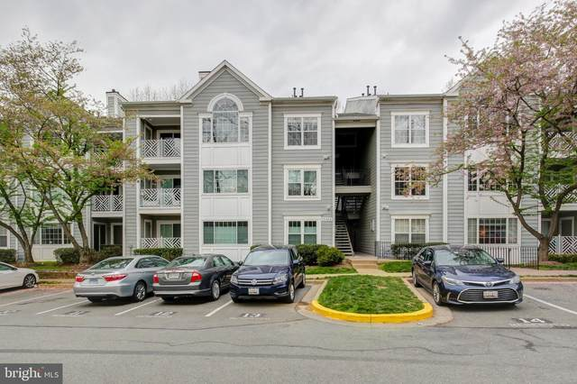 20404 Shore Harbour Drive 3-L, GERMANTOWN, MD 20874 (#MDMC703112) :: The Gold Standard Group