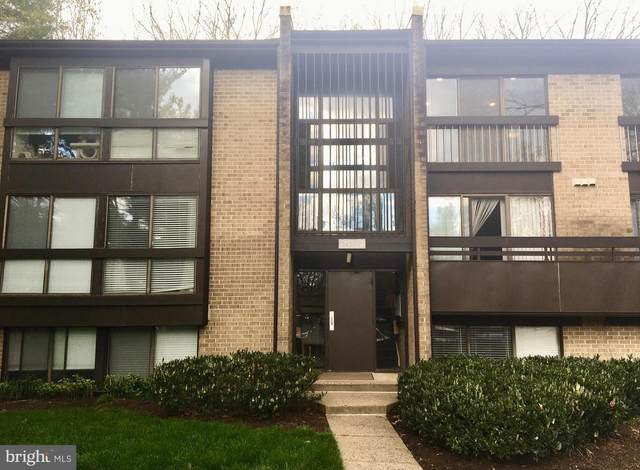 11557 Rolling Green Court #301, RESTON, VA 20191 (#VAFX1122184) :: The Licata Group/Keller Williams Realty
