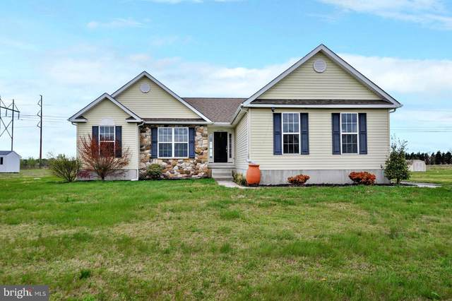 20396 Blueberry Drive, LINCOLN, DE 19960 (#DESU159484) :: John Smith Real Estate Group
