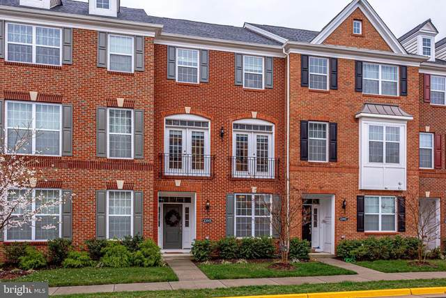 43009 Paris Gap Square, ASHBURN, VA 20148 (#VALO408112) :: Coleman & Associates
