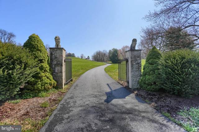 835 White Oak Road, MANHEIM, PA 17545 (#PALA161858) :: The Joy Daniels Real Estate Group