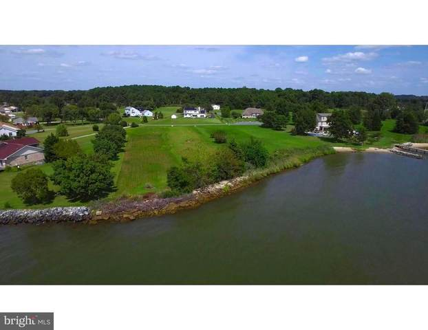 Lot 2 Ferry Point Court, TRAPPE, MD 21673 (#MDTA137890) :: SP Home Team