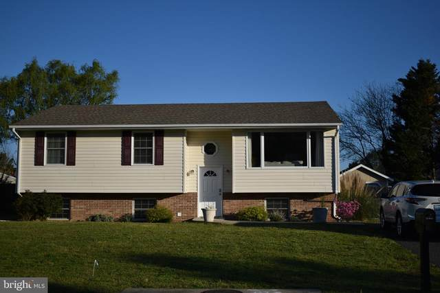 7292 Frances Street, EASTON, MD 21601 (#MDTA137900) :: Bob Lucido Team of Keller Williams Integrity
