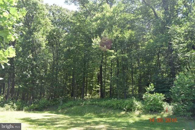 1132 Barbara Lane, ALBURTIS, PA 18011 (#PABK356866) :: ExecuHome Realty