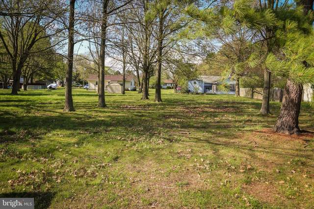 0 Crisfield Lane, PRINCESS ANNE, MD 21853 (#MDSO103430) :: Atlantic Shores Sotheby's International Realty