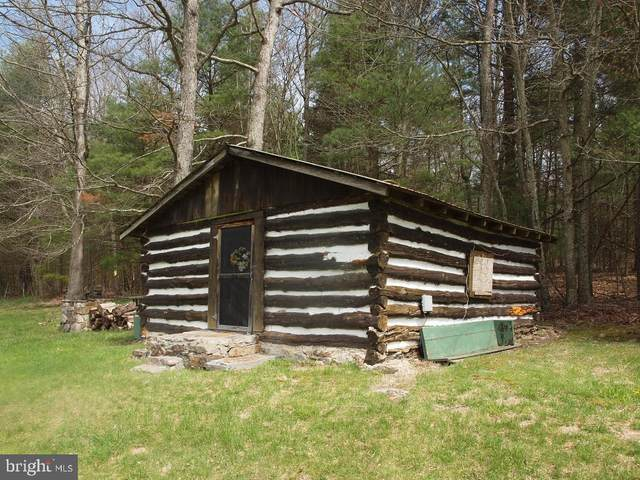 184 Skiles Pitsenbarger Road, UPPER TRACT, WV 26866 (#WVPT101456) :: The Redux Group