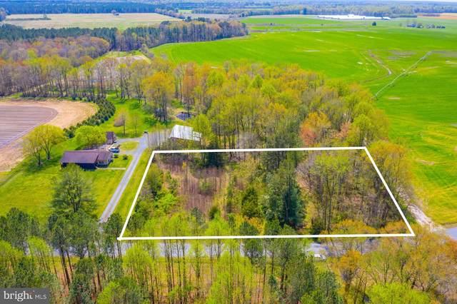 27515 Anthony Mill Road, DENTON, MD 21629 (MLS #MDCM123948) :: Maryland Shore Living | Benson & Mangold Real Estate
