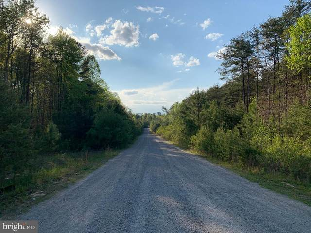 Lot 10 Gibson, BUMPASS, VA 23024 (#VALA121034) :: Gail Nyman Group