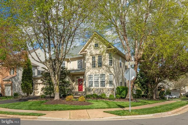 20420 Tappahannock Place, POTOMAC FALLS, VA 20165 (#VALO408772) :: Great Falls Great Homes
