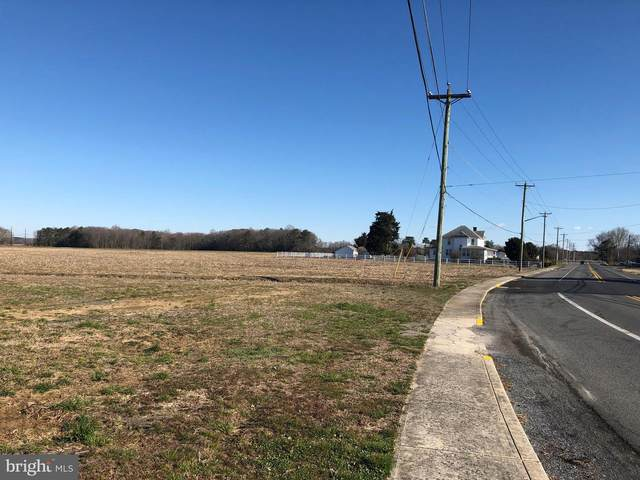 114.99 Acres E Clayton Avenue, FRANKFORD, DE 19945 (#DESU159812) :: The Allison Stine Team