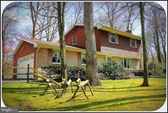 385 N Sunrise Lane, BOYERTOWN, PA 19512 (#PABK356982) :: Tessier Real Estate